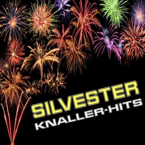 Silvester Knaller-Hits by Various Artists