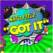 Got It by Nato Feelz