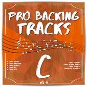 Pro Backing Tracks C, Vol. 16 by Pop Music Workshop