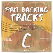 Pro Backing Tracks C, Vol. 15 by Pop Music Workshop