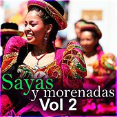 Sayas y Morenadas, Vol. 2 by Various Artists