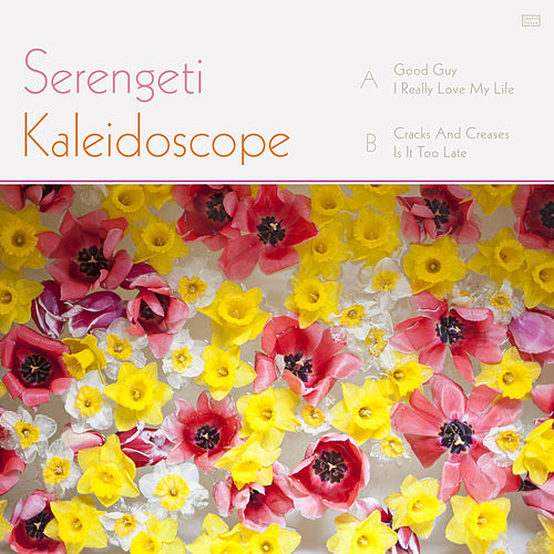 Kaleidoscope by Serengeti