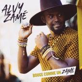 Bouge comme un Zamé by Alvy Zamé