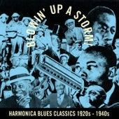 Blowin' Up a Storm! (Harmonica Blues Classics 1920S - 1940S) de Various Artists
