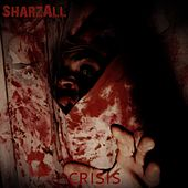 Crisis by Sharzall