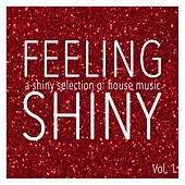 Feeling Shiny, Vol. 1 - Shiny Selection of House Music by Various Artists
