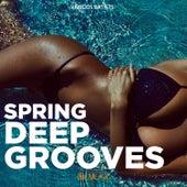 Spring Deep Grooves von Various