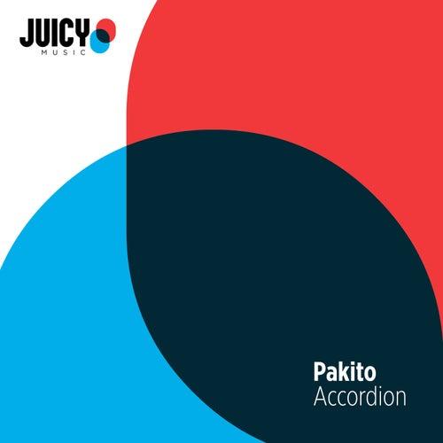 Accordion by Pakito