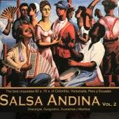 Salsa Andina, Vol. 2 de Various Artists