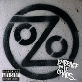 Embrace The Chaos by Ozomatli