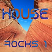 House Rocks Vol.1 by Various Artists