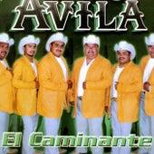 El Caminante by Avila