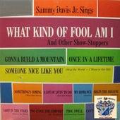 What Kind of Fool Am I by Sammy Davis, Jr.