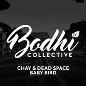 Baby Bird von Chay