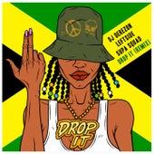 Drop It (Remix) by DJ Derezon
