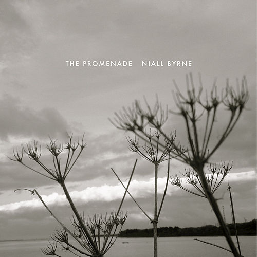 The Promenade by Niall Byrne