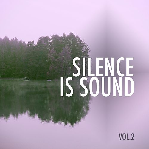 Silence Is Sound, Vol. 2 by Various Artists