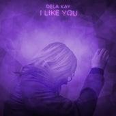 I Like You by Delakay