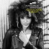 Novocaine Heart (Paul O'Duffy Remix) by Kandace Springs