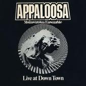 Live at Down Town von Appaloosa Mainstream Ensemble