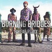 Burning Bridges (Fakear Remix) de Patrice