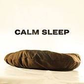 Calm Sleep – Relaxing Therapy at Goodnight, Peaceful Lullabies, Sweet Night, Relaxation, Soft Melodies, Easier Sleep, Relief by Sleep Sound Library