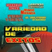 Variedad De Exitos by Various Artists