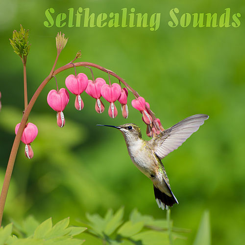 Selfhealing Sounds by Various Artists
