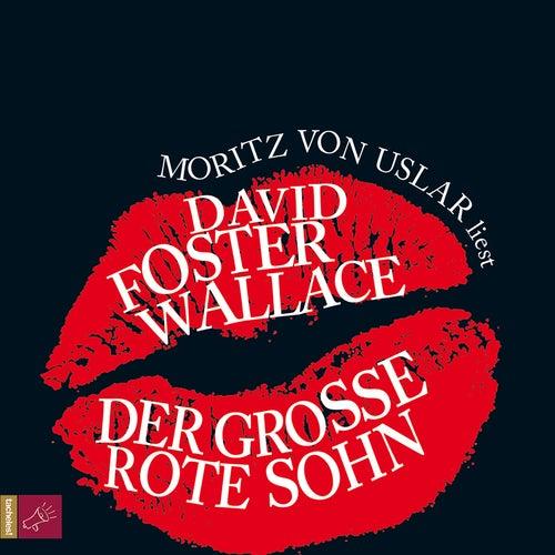 Der große rote Sohn von David Foster Wallace