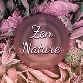 Zen Nature – Relaxing Music, New Age 2017, Deep Meditation, Yoga, Rest, Relief Stress de Sounds Of Nature