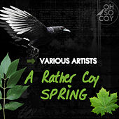 A Rather Coy Spring by Various Artists