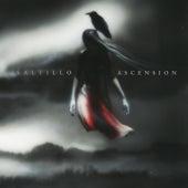 Ascension by Saltillo