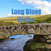 Long Blues Walks de Various Artists