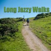 Long Jazzy Walks de Various Artists