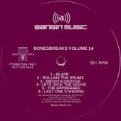 Bonesbreaks Vol 14 de Frankie Bones