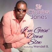 I'm Going Down Slow (feat. Wendell B) de Sir Charles Jones