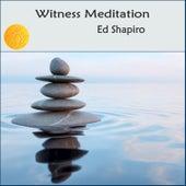 Witness Meditation: Guided Vipassana Mindfulness Meditation de Ed Shapiro