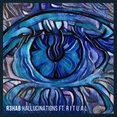 Hallucinations de R3HAB