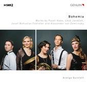 Bohemia de Acelga Quintett