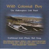 Wild Colonial Boy by Gallowglass Ceili Band