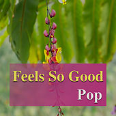 Feels So Good: Pop by Various Artists