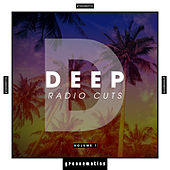 Deep Radio Cuts, Vol. 1 by Various Artists