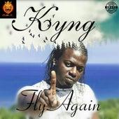 Fly Again by Kyng