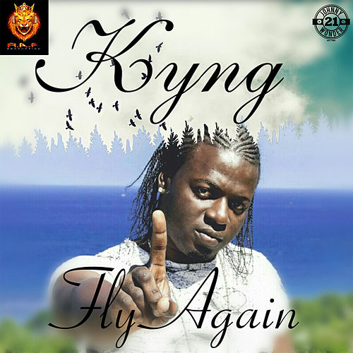 Fly Again by Kyng