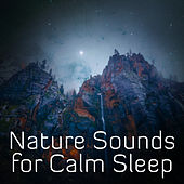 Nature Sounds for Calm Sleep – Soft Sounds to Relax, Piano Music, Waves of Calmness, Cure Insomnia de Nature Sound Collection