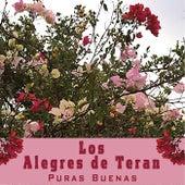 Puras Buenas by Los Alegres de Teran