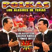 Polkas 15 Exitos by Los Alegres de Teran