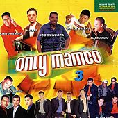 Only Mambo, Vol. 3 de Various Artists
