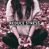 Reduce Stress – Calming New Age Music to Help with Stress, Relaxing Waves, Time to Calm Down de Healing Sounds for Deep Sleep and Relaxation