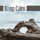 Keep Calm with Nature Sounds – Nature Sounds for Relaxation, Cure Insomnia, Soothing New Age Music de Nature Sounds Artists
